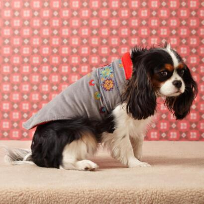 FETCHING FLOWERS DOG JACKET