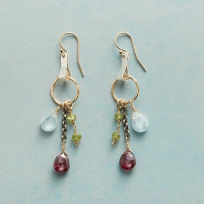 ALPINE GLIMPSE EARRINGS